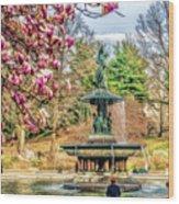 New York City Central Park Bethesda Fountain Blossoms Wood Print
