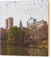 New York City Central Park Living - Impressions Of Manhattan Wood Print