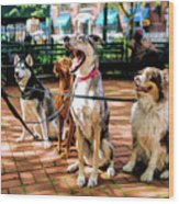 New York City Dog Walking Wood Print