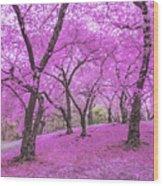 New York City Springtime Wood Print