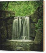 New York City Waterfall Wood Print