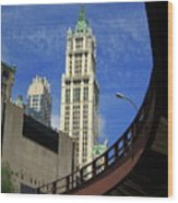 New York City - Woolworth Building Wood Print