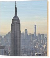 New York Empire State Building Wood Print