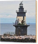 New York Lighthouse-3 Wood Print