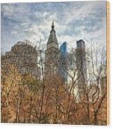 New York, New York Wood Print