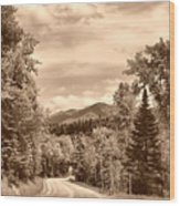 New York Roadway Wood Print