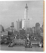 New York Skyline From Brooklyn  Wood Print