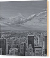 New York Skyline - View On Central Park - 2 Wood Print
