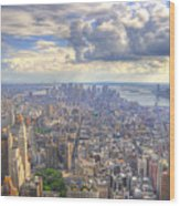 New York State Of Mind   High Definition Wood Print by Mandy Wiltse