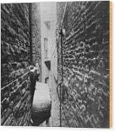 New York: Tenement, C1890 Wood Print