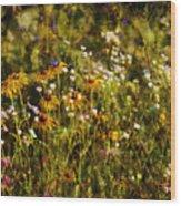 New York Wildflowers Xxvi Wood Print