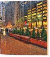 New York05 Wood Print