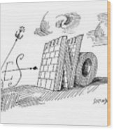 New Yorker May 28th, 1960 Wood Print