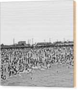 New Yorkers At Coney Island. Wood Print