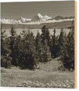 New Zealand Mountains Wood Print