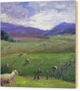 New Zealand Sheep Farm Wood Print