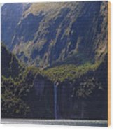 New Zealand Stirling Falls In Hanging Valley Wood Print