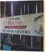 Newark Bisons Wood Print