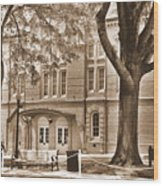 Newberry Opera House Newberry Sc Sepia Wood Print