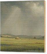 Newburyport Meadows  Wood Print