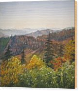 Newfound Gap Wood Print by Shirley Braithwaite Hunt