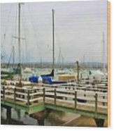 Newport Bay And Balboa Island Wood Print