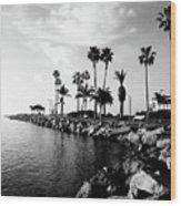 Newport Beach Jetty Wood Print by Paul Velgos