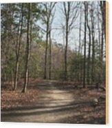 Newport News Park 2 Wood Print