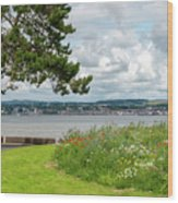 Newport-on-tay In Fife, Scotland Wood Print