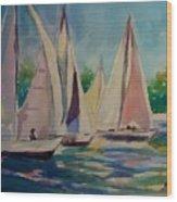 Newport Regatta  Wood Print