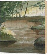 Newton Creek 1 Wood Print by Sean Seal