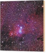 Ngc 2264 The Christmas Tree Cluster In Monoceros Wood Print