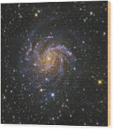Ngc 6946, Also Known As The Fireworks Wood Print