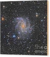 Ngc 6946, The Fireworks Galaxy Wood Print