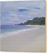 Ngliyep Beach Wood Print