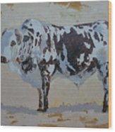 Nguni Bull Wood Print