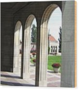 Niagara Archway Wood Print