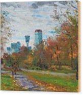 Niagara Falls Park Wood Print