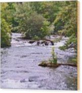 Niagara River  Wood Print