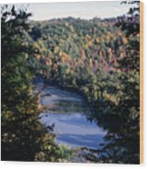 Niagaratributary Wood Print