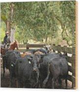 Nick Loading Cattle Wood Print