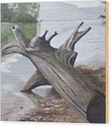 Nickajack Driftwood Wood Print