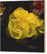 Night Begonias Four Wood Print