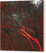 Night Blaze Wood Print
