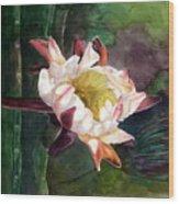 Night Blooming Cereus Wood Print