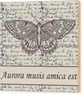 Night Butterfly On Old Letter Wood Print