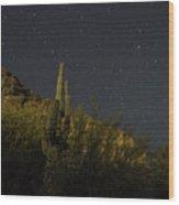 Night Cactus Wood Print