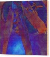Night Feathers   -019 Wood Print