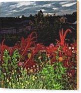 Night Garden Series 3 Wood Print