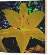 Night Glow Lily Wood Print